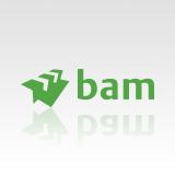 bam logo design